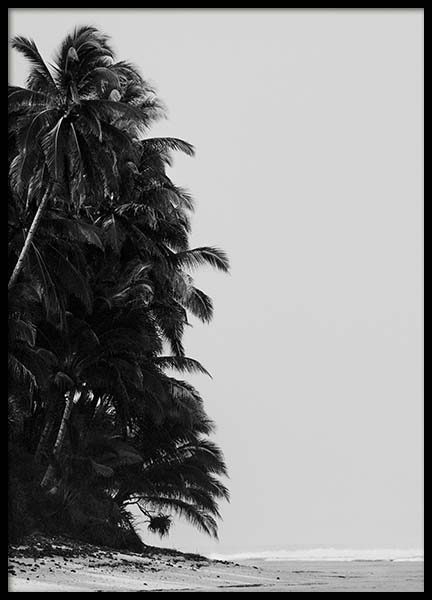 Palm Trees By Sea Plakat i gruppen Plakater / Sort-hvid hos Desenio AB (10235)