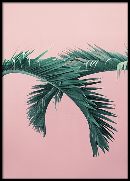 Pink & Green Plakat i gruppen Studio Collections / Studio Coast to Coast / Miami hos Desenio AB (10771)