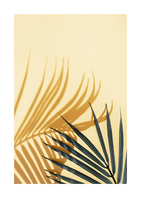 Palm Shadow Yellow Plakat / Fotokunst hos Desenio AB (12862)