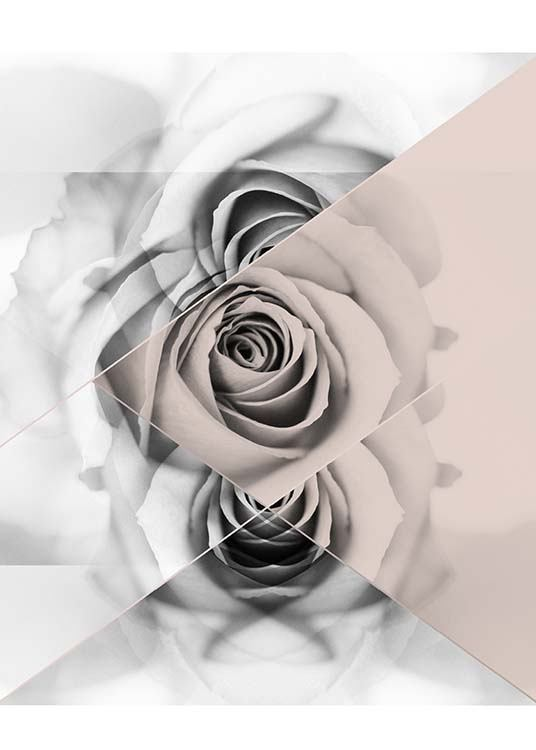 Graphic Rose Plakat / Grafisk  hos Desenio AB (2790)
