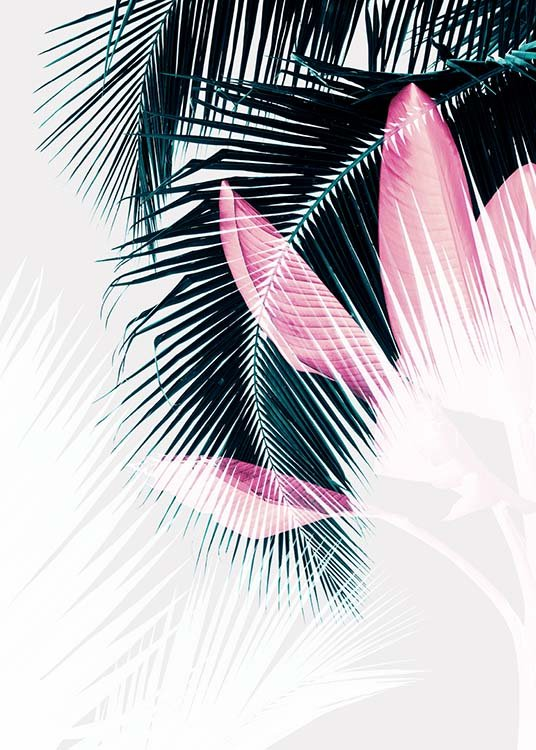 Palm Leaves Exposure Plakat / Botanik hos Desenio AB (3592)