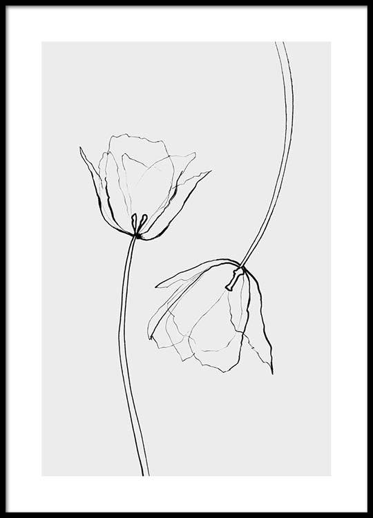 Line Drawing Poster : Line tulips plakat