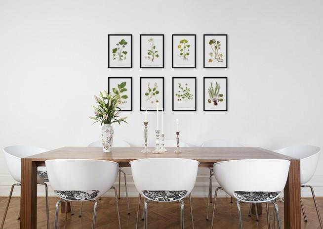 Nordisk indretning, plakater med botanik